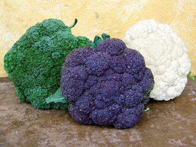 Broccoli - خواص کلم بروکلی - خاصیت های شگفت انگیز بروکلی برای بدن