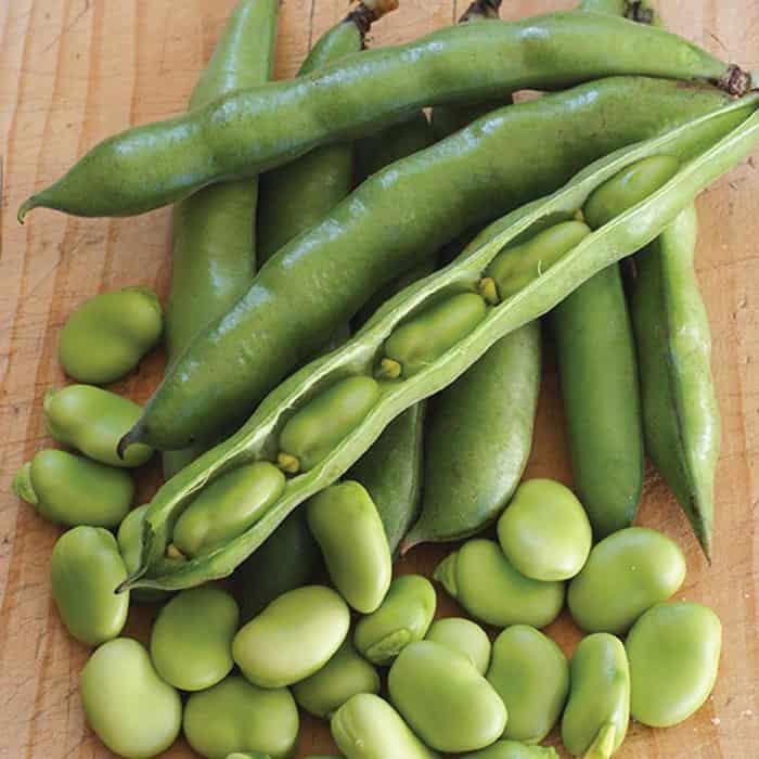 4111.1 - خواص بی نظیر باقلا - خواص موادغذایی - سلامت