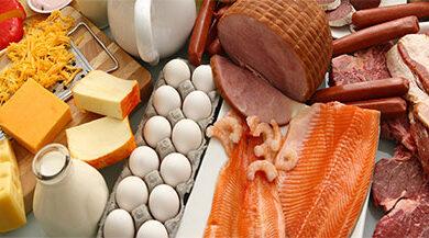 protein 390x217 - منابع اصلی پروتئین - ۲۰ بهترین ماده غذایی سرشار از پروتئین